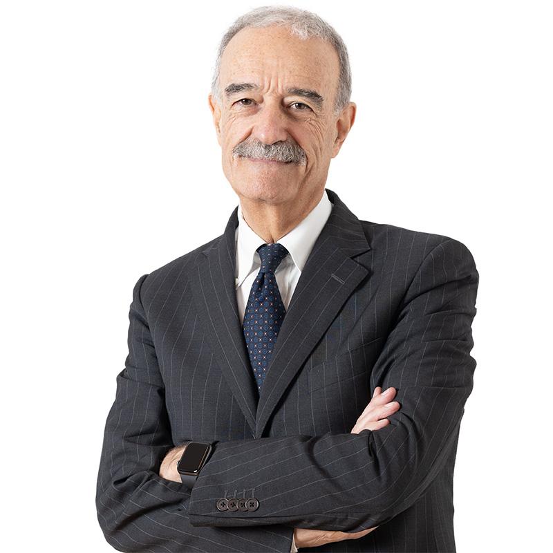 prof. Mauro Miccio - studio legale Piselli and Partners